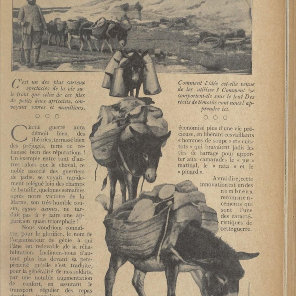 """Illustrations extraite de la """"Lectures pour tous : revue universelle et populaire illustrée"""" du"""