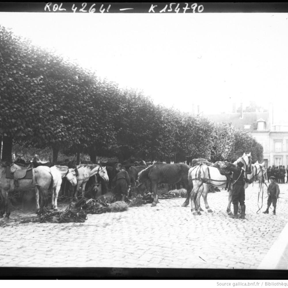 http://gallica.bnf.fr/ark:/12148/btv1b6932067g.thumbnail.highres.jpg